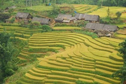 Best of the North Vietnam Tour